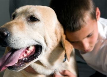 Pets Can Be Experts at Comforting People in Times of Grief