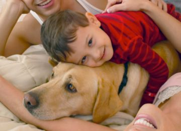 Pet Grief and Dog Heaven
