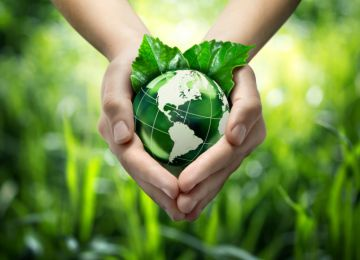 Funeral Conventions Offer a Wealth of Options