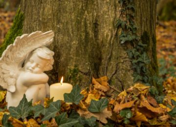 Consider Sustainability When Making Funeral Arrangements