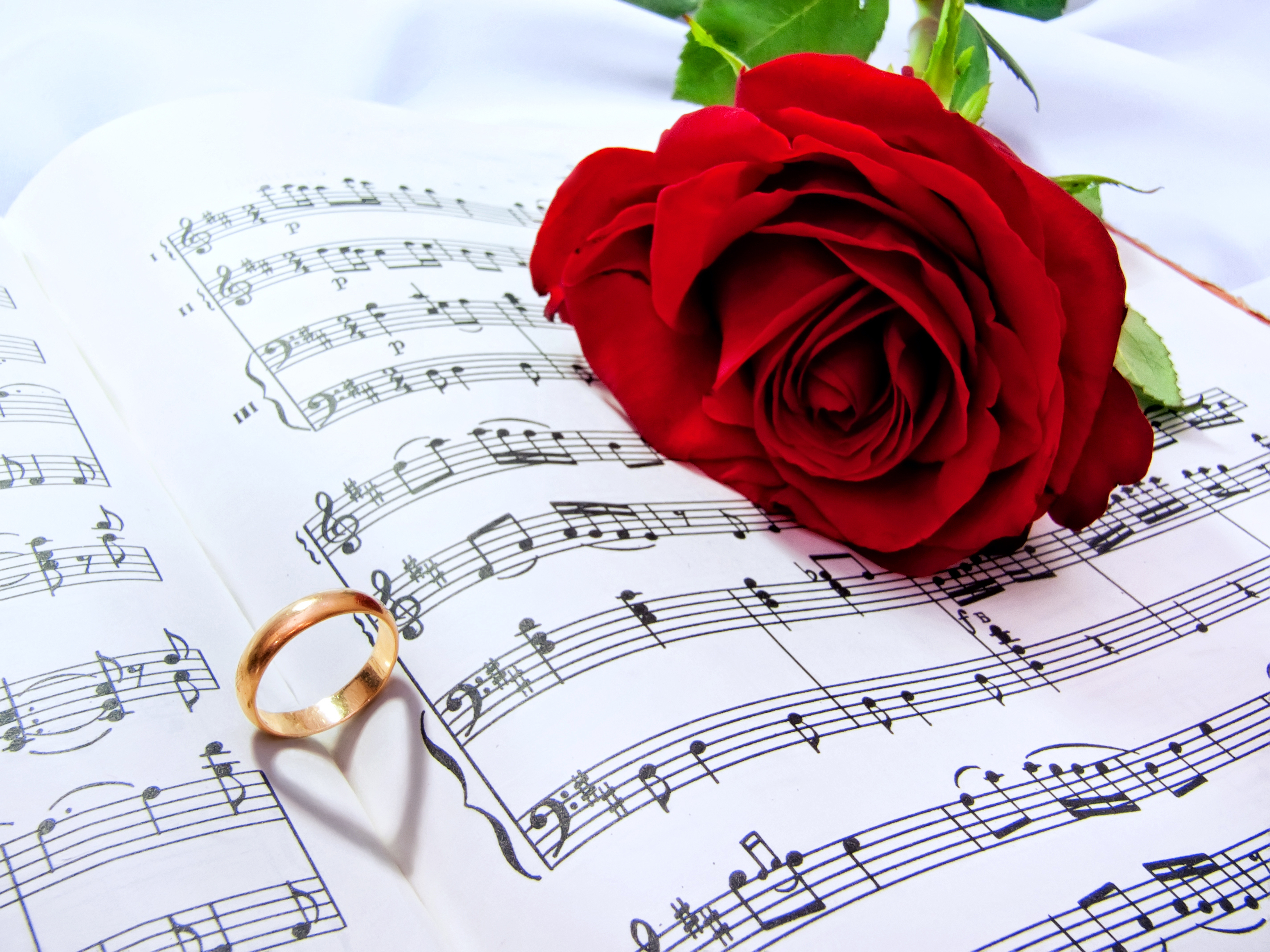 Choosing ceremonial music for your wedding get ordained for How do i get ordained to perform wedding ceremonies