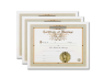 Marriage Certificate 3 Pack