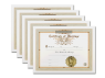 Marriage Certificate 5 Pack