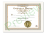 Marriage Certificate Single Pack