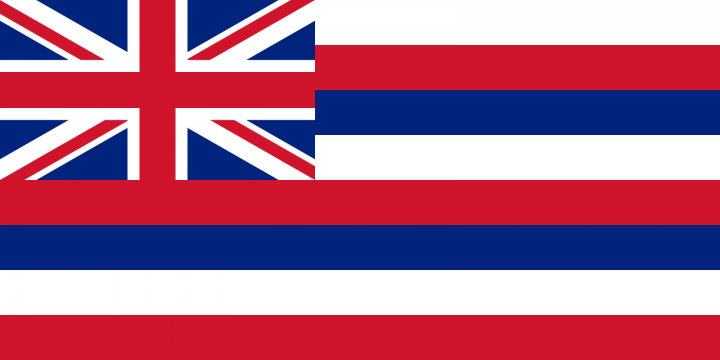 The Hawaii state flag