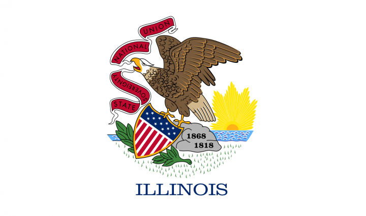 The Illinois state flag