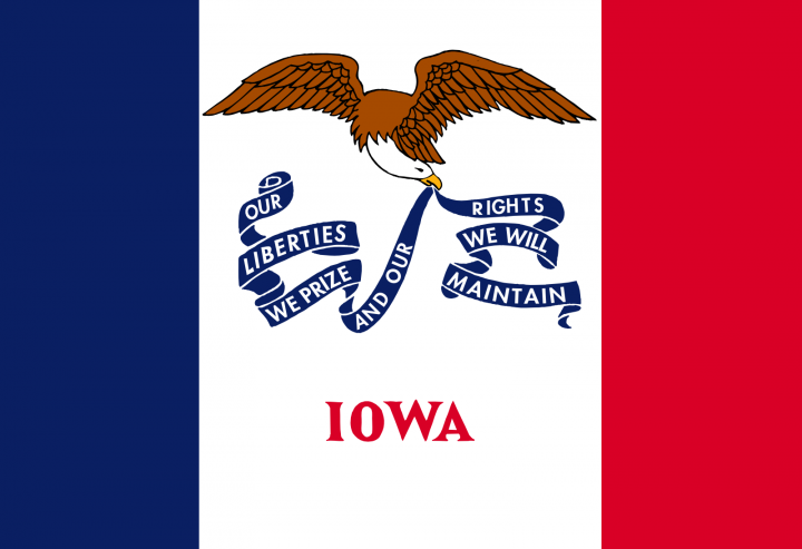 The Iowa state flag