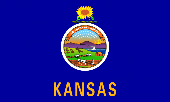 The Kansas state flag