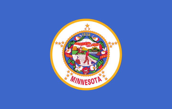 The Minnesota state flag