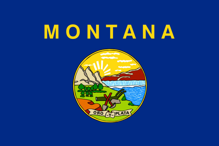 The Montana state flag