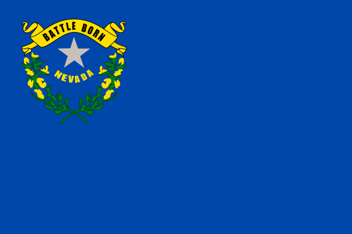 The Nevada state flag
