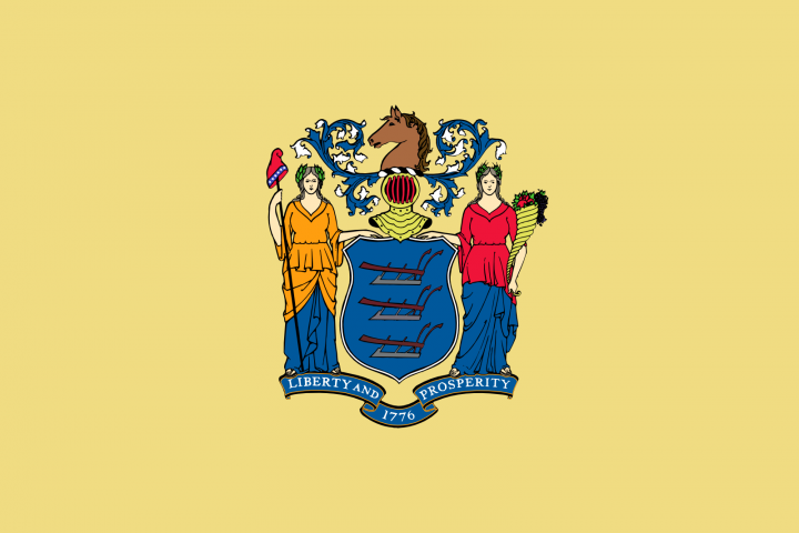 The New Jersey state flag
