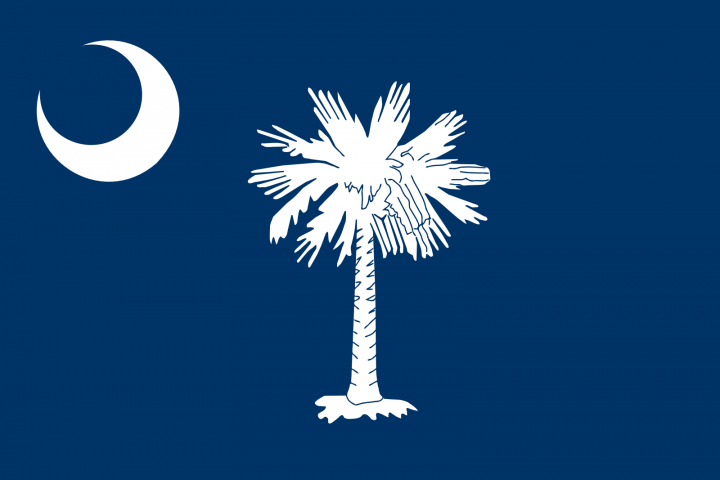 The South Carolina state flag